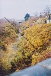 Goonhavern Railway Cutting now The Park Circa 1975