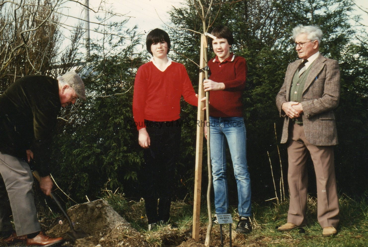 Tree Planting in the Park - Circa 1984 Roy Inch- Kevin Tonkin - Andrew Rice - Ashley Waters