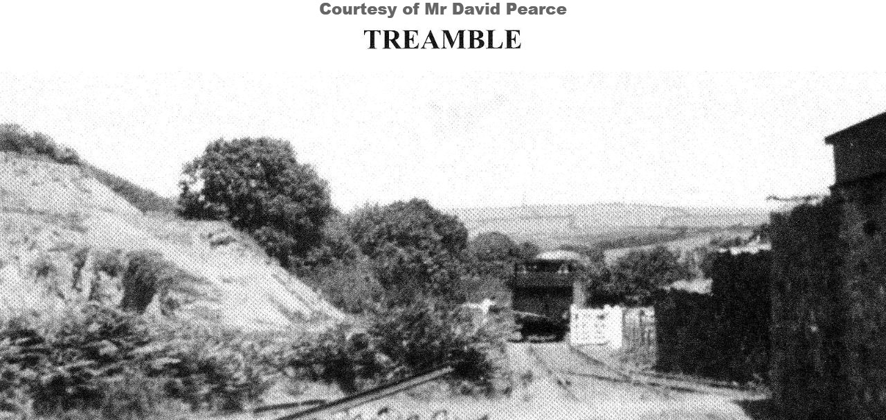 Treamble branch (2)